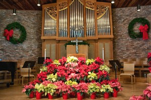 Christmas decorations with poinsettias 2
